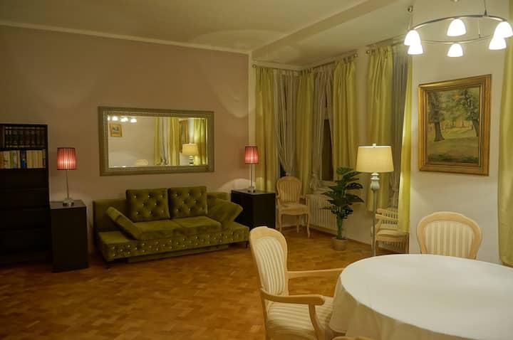 Großes Appartement im Villenviertel überm Elbtal