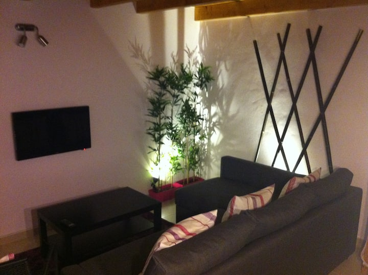 Lovely House in Historic City Center - myhome4u