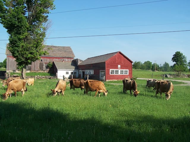 Come stay on a real VT dairy farm! - West Pawlet - Huis