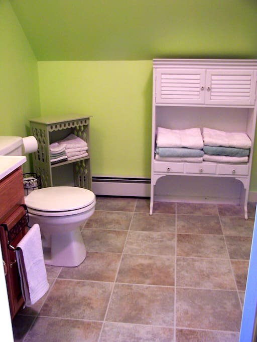 Roomy, well appointed bathroom.