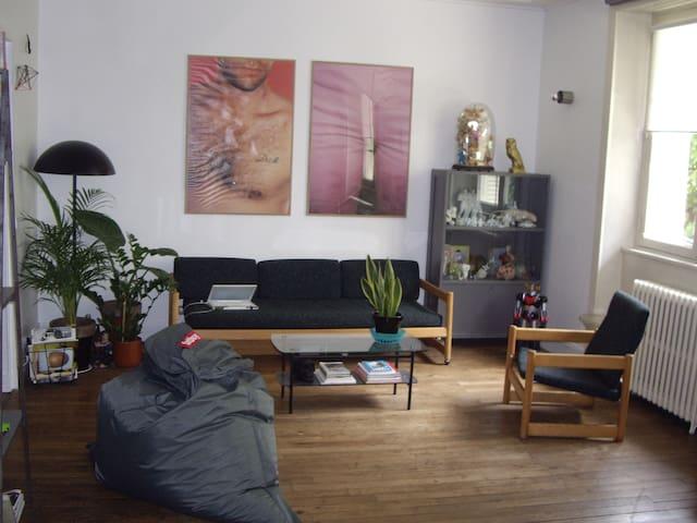 Rennes Chambre Chez L 39 Habitant Appartements Louer