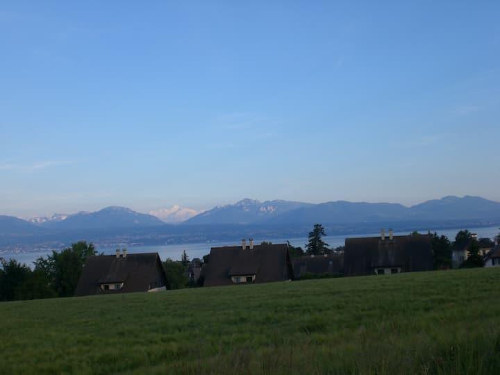 Face au lac et aux montagnes I