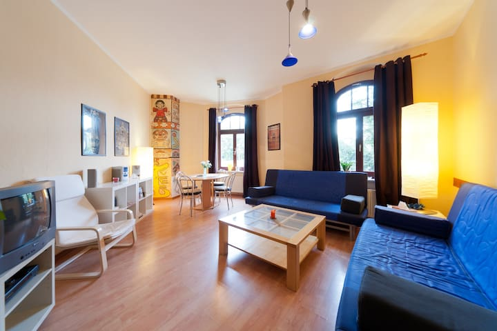 Comfortable flat in Dresden