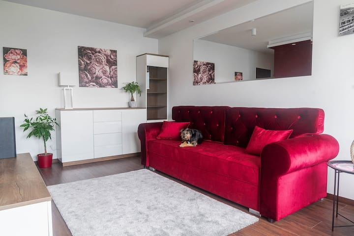 Luksusowy Apartament Studio Rose Valley