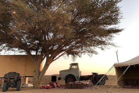 مخيم هلا hala camp خصوصيه و اهتمام بجميع التفاصيل