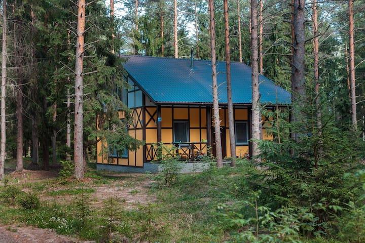 Уютный коттедж на берегу Невы.