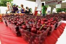 Cherry capital!