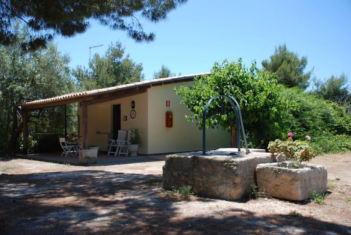 Appartamento a 250 mt. dal mare - Punta Milocca - Appartement