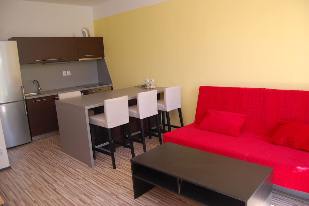 Living room with doublebed sofa and kitchen (WI-FI 20Mb/s and cable TV with news and sport international channels).