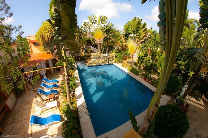 Tropical Garden-EXCLUSIVE APARTAMENT 2 Rooms (A)