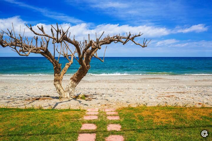 Calm and serene location