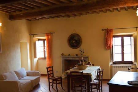 A real Italian adventure in Toscany - San Dalmazio - Pis