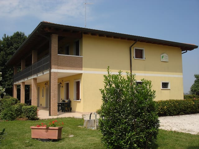 Folaghe1 - Palazzolo dello Stella