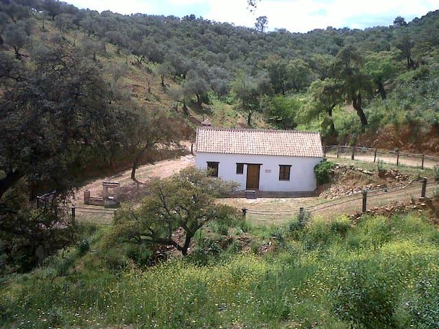 Casa Rural CORTIJO VIEJO - Cazalla de la Sierra - Hus