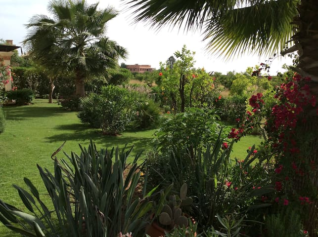 (116) Magnifique villa sans Vis-à-vis, Dyar Shemsi