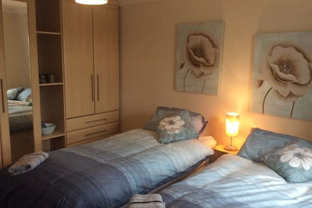 Twin Bedroom in Spacious Porthyrhyd Home near M4 - Porthyrhyd - Haus
