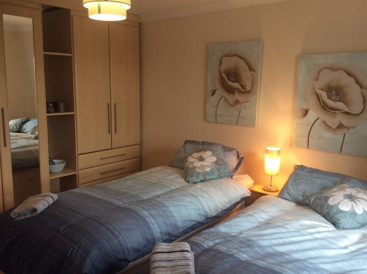 Twin Bedroom in Spacious Porthyrhyd Home near M4