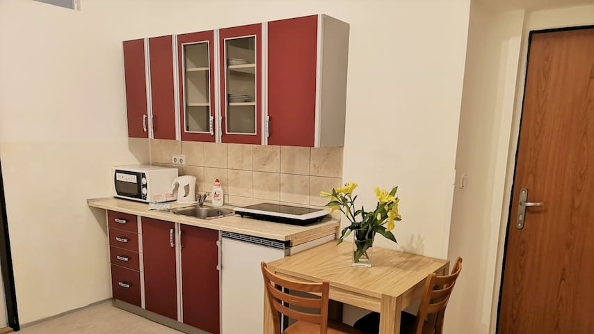 Family apartment in the center of Prague