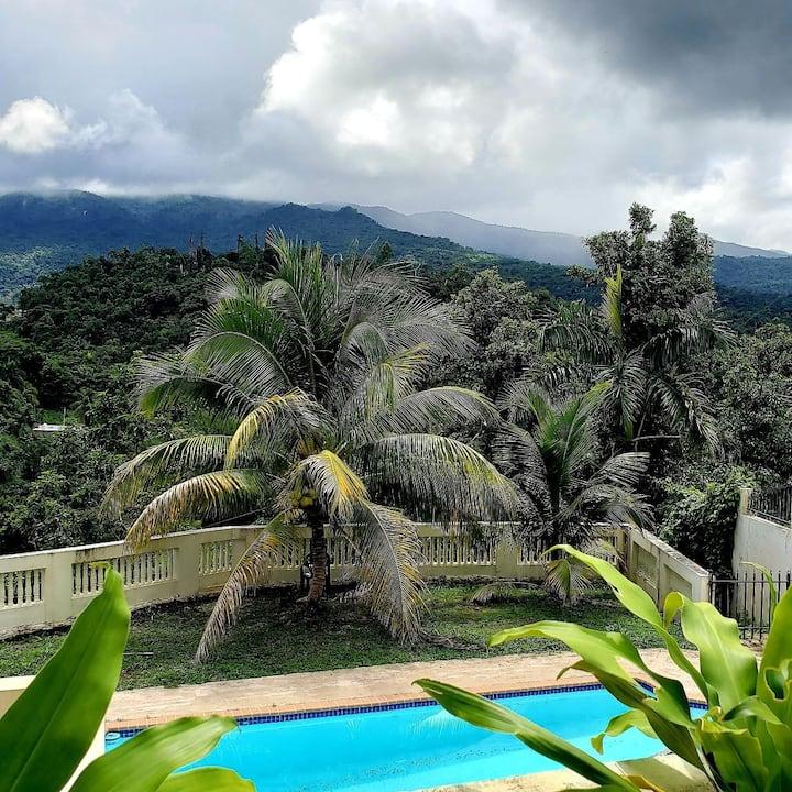 Healing Rainforest Retreat Private Room 2