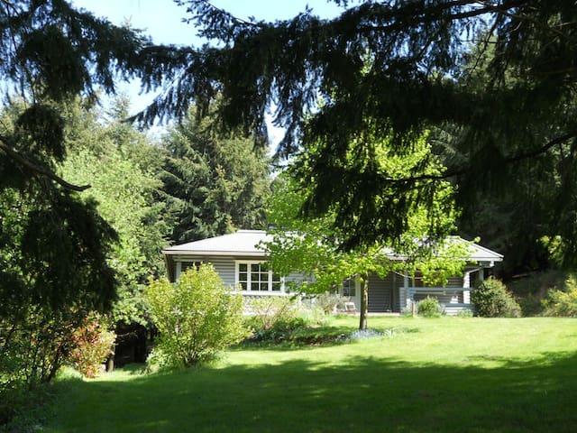 Ressourcement en pleine nature forestière 2P - Pradelles-Cabardès - Chalet