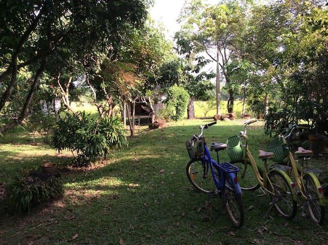 Bunloed's homestay, a hidden place in Esan