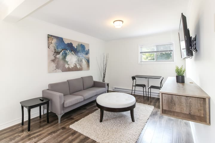 Newly Renovated, Clean and Bright 1 BR Apartment