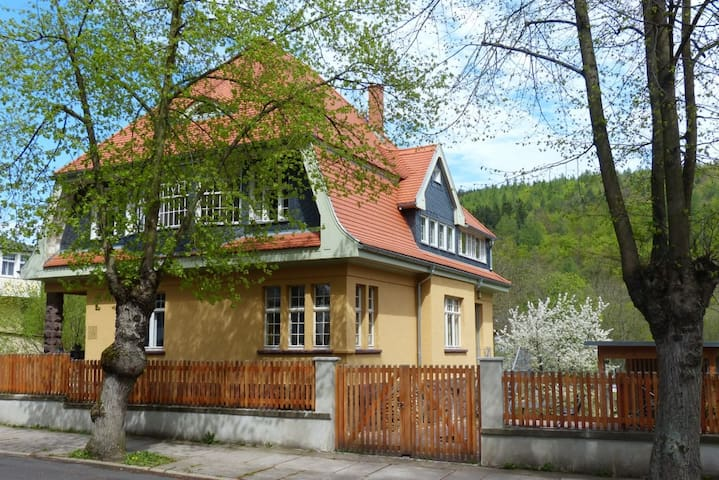 Holiday Apartment VILLA FRÜBING - Ilmenau
