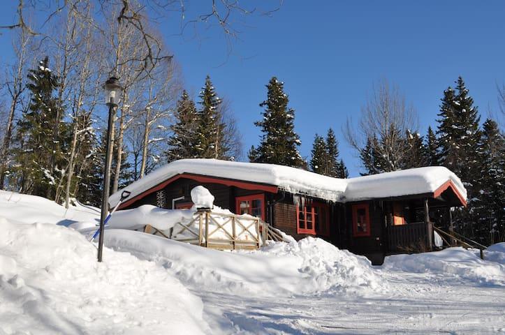 Brattland Ski Lodge Åre. Vedeldad bastu,öppen spis