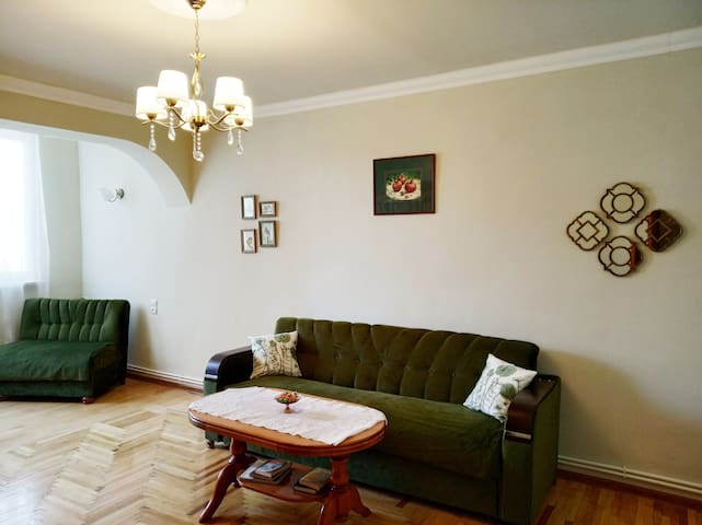 SUNNY & COMFY  apt in 5min drive from city centre