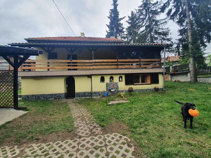 Dragiev House