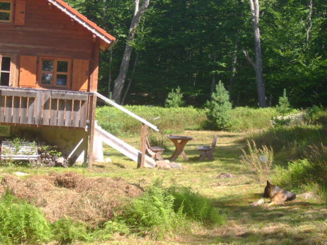 secluded cabin catskill park on 20 acres houses for rent in
