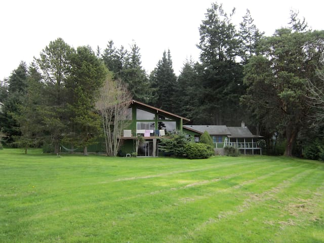 The Green Parrot, Whidbey Island WA
