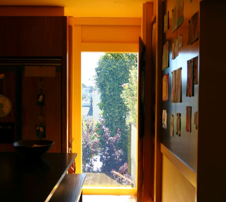Kitchen detail 2 view of backyard out the window.