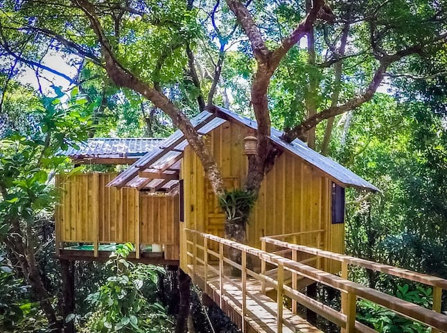 Guanaja Tree house Your childhood dream come true!