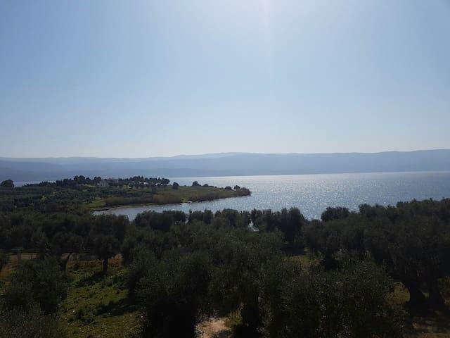 vista sul lago  di  varano