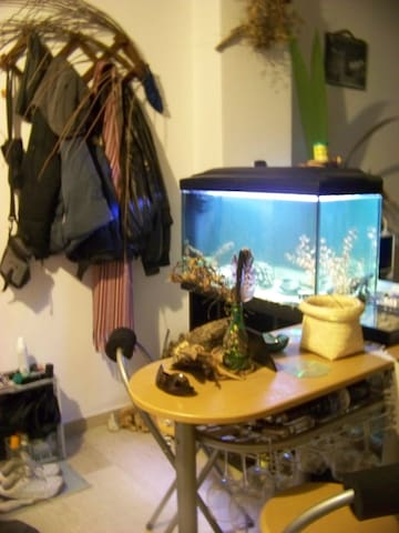 Sea-life apartment