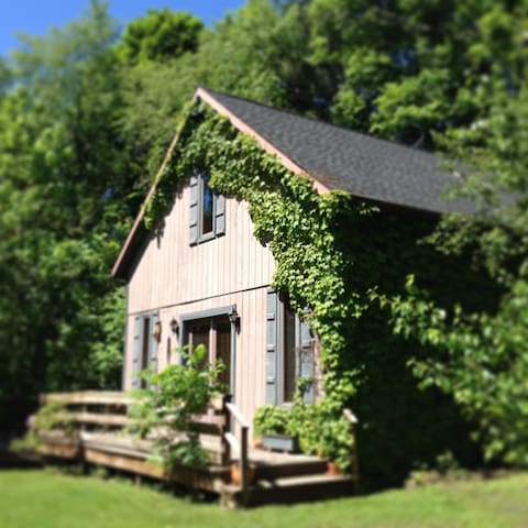 Cozy Storybook Cottage in Quiet Neighborhood - Saugerties - House