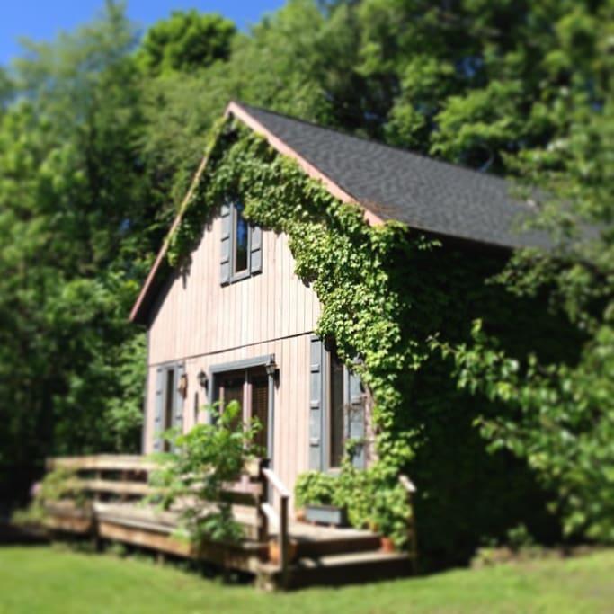 Cozy Storybook Cottage In Quiet Neighborhood