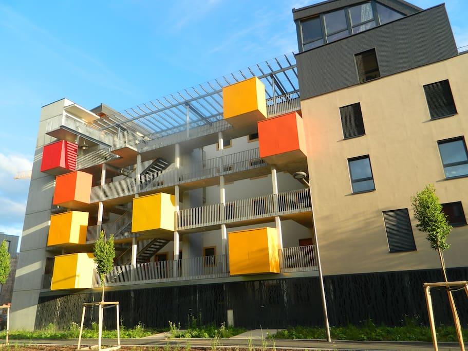 K'Hutte, immeuble BBC construit avec des matériaux écologiques, les box , la verrière