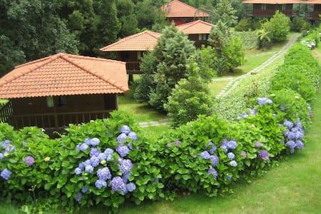 Abrigo de Montanha Natureza e você - Santa Cruz - Hut