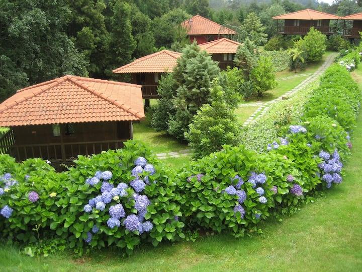 Abrigo de Montanha Natureza e você