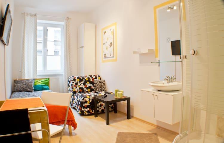 Enjoy Vienna in central location+ private shower