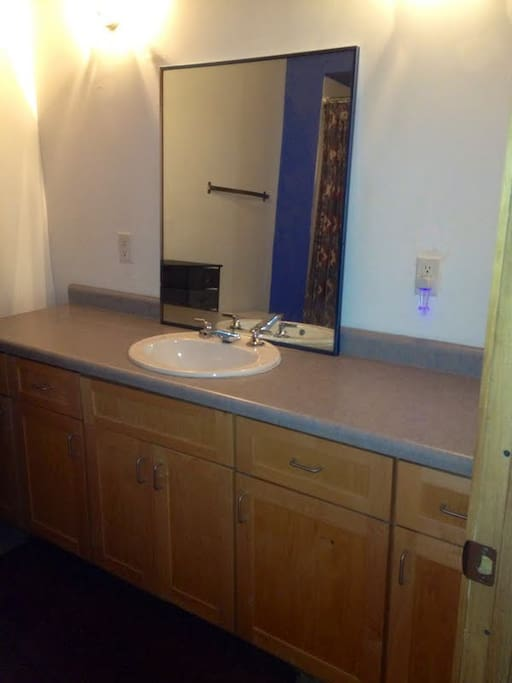 Bathroom has bathtub and shower and plenty of countertop space
