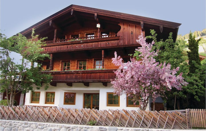 Nice home in Alpbach with WiFi and 2 Bedrooms