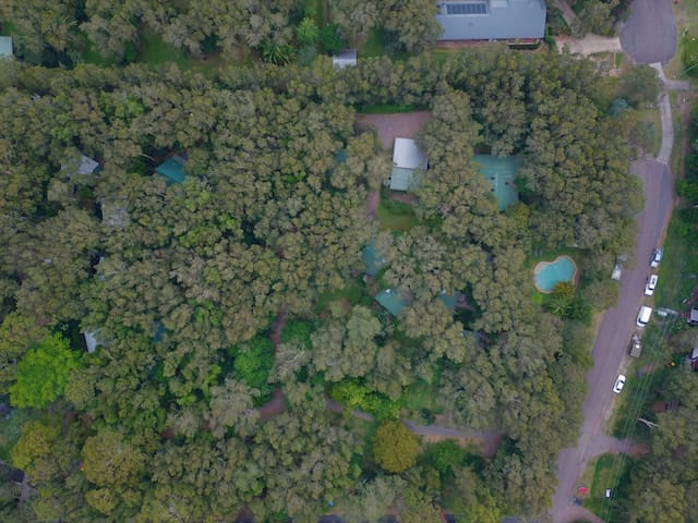 Hidden in the rainforest only 400 metres from the beach