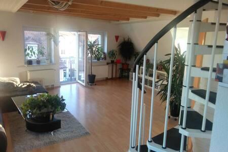 Gemütliches Zimmer in bester Lage - Apartment