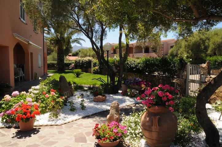 Wonderful apartments near the beach - San Teodoro - Leilighet