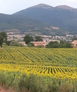 Umbria, home in countryside near Assisi Spoleto