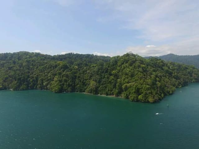 Rustic Tropical Paradise - Golfito - Chatka