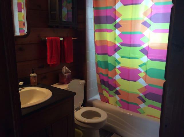 Bathroom, cedar plank walls in here, too.  Very cabin-y!